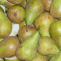 Conference Pears SmartFresh